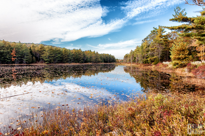 travel_photographer_acadianationalpark_brianbraun--9